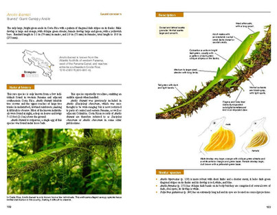 Reptiles of Costa Rica.