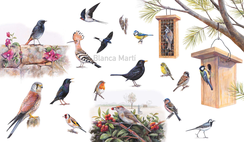 Los pájaros de los parques
