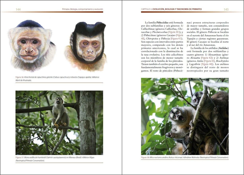 Primates. Biología, comportamiento y evolución.