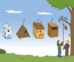 Las cajas nido
