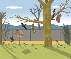 Comedores de pájaros