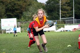 Rugby_shaldon.jpg