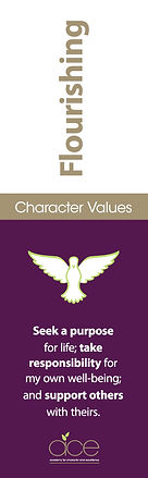 Ace_Values_Flourishing.jpg
