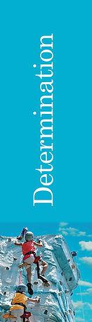 determination_6.jpg