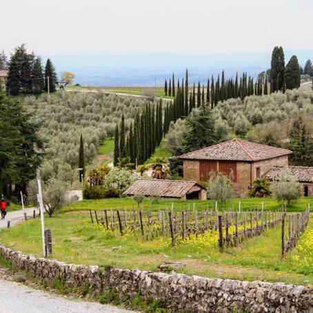 Fietsen door wijngaarden en over Strade Bianche