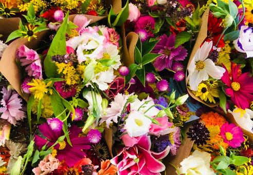 collage of flowers 2.jpg