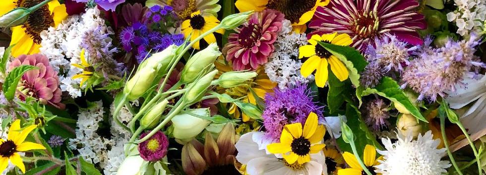 collage of flowers 1.jpg