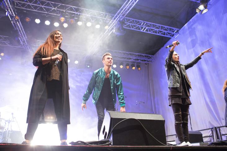 Kløver og Skarre R - lysfesten 2016