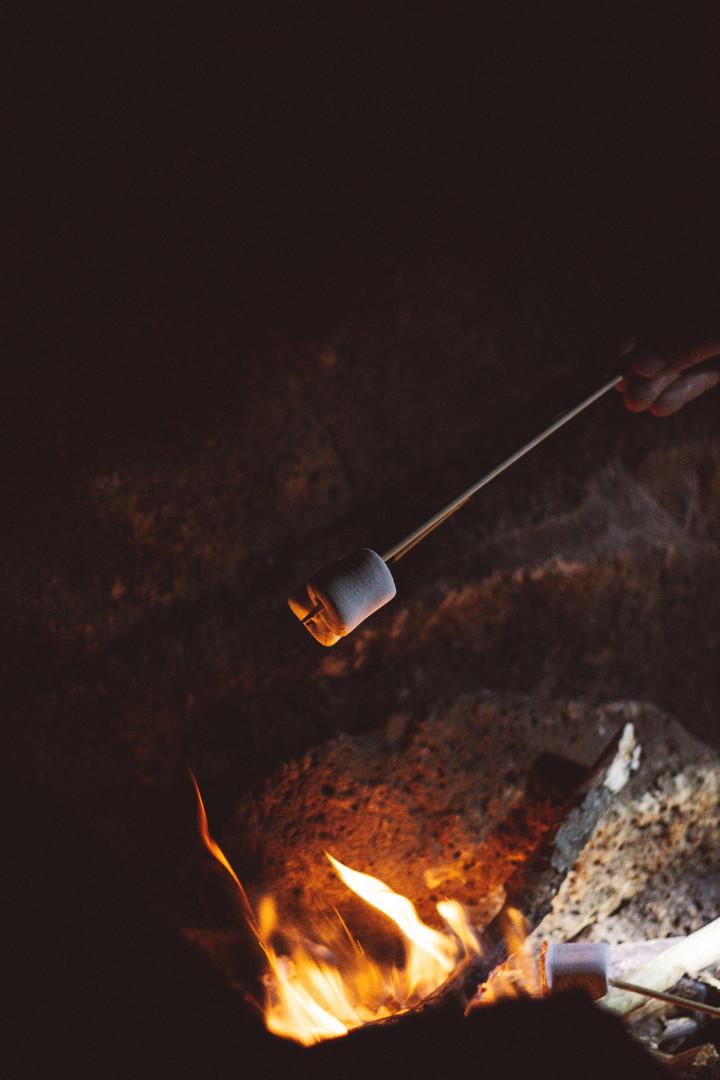 ash-bonfire-burn-1752951.jpg