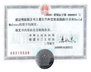 Chinese Cert.png
