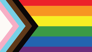 lgbtqia blm flag
