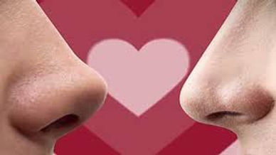 scent_and_attraction_noses.jpg