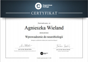 certyfikat_ps.jpg