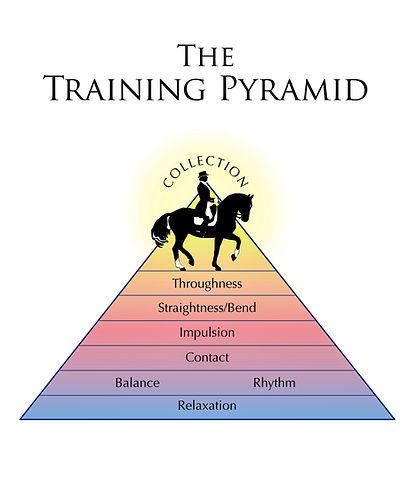 Kingdom Keys Dressage Training Pyramid