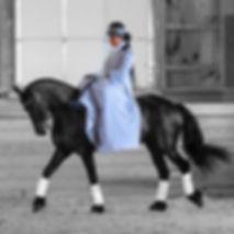 Kindgdom Keys Dressage | Sidesaddle | Susan Stegmeyer