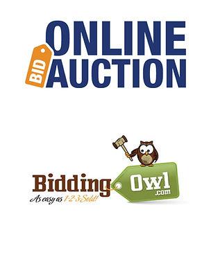 Online Auction.jpg