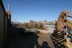 RoofGarden+Party BEFORE