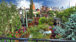 West Village Rooftop