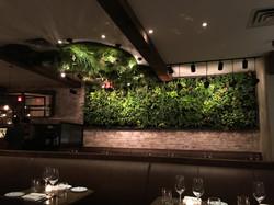Beasts & Bottles Green Wall + Ceiling
