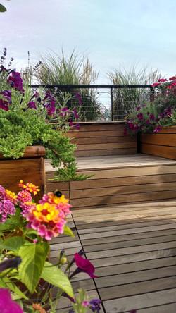 FireDeanEntry#4-Deck&Bee.jpg