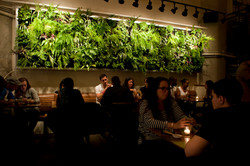 Atruim - Green Wall Dinner