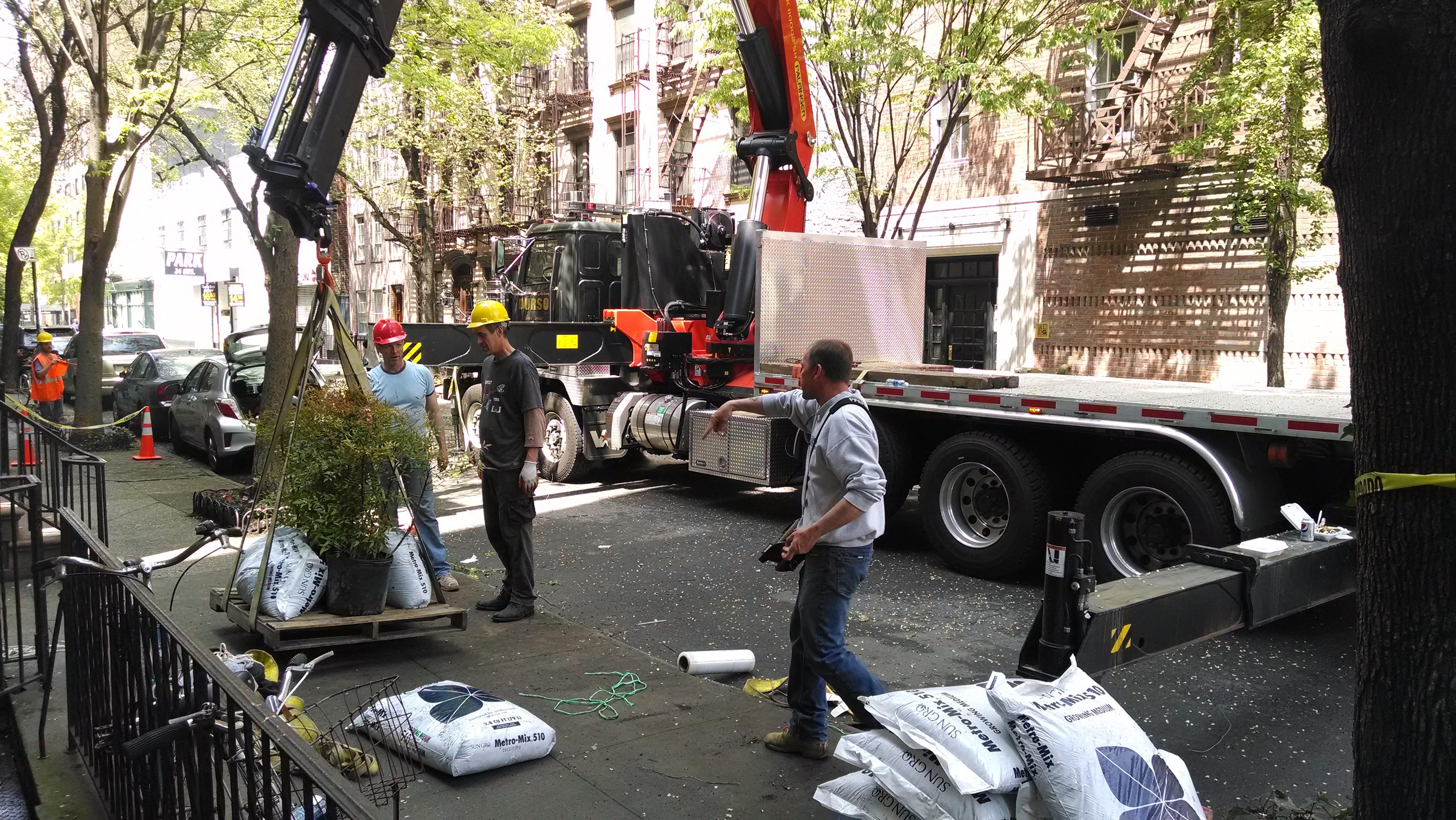 crane loading1.jpg