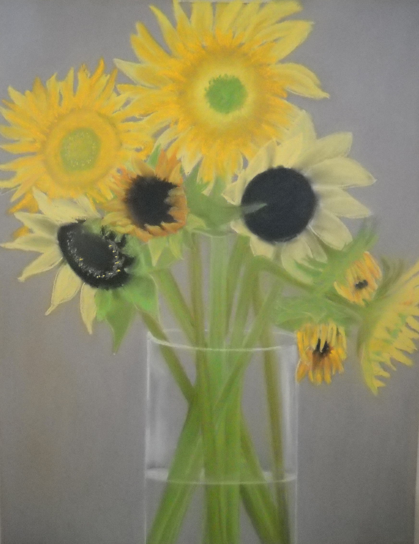 Medley of Sunflowers