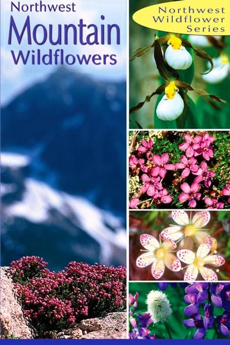 Northwest Mountain Wildflowers