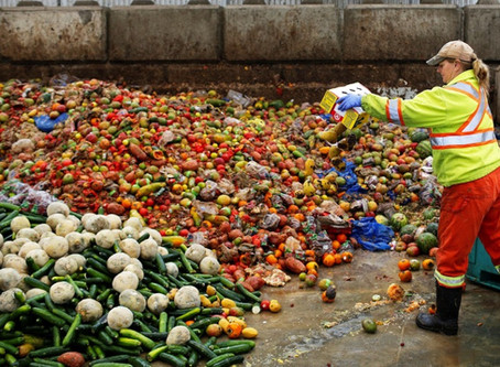 How are Large Corporates cutting down Food Loss and Food Waste?