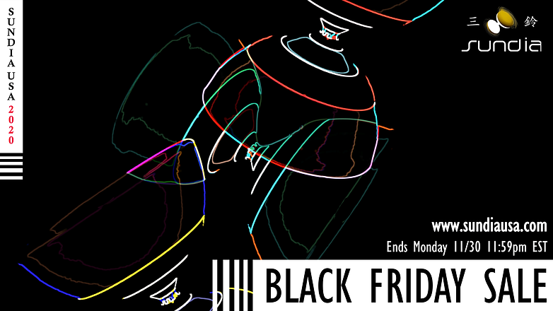 11252020_Sundia USA Black Friday Flyer_L