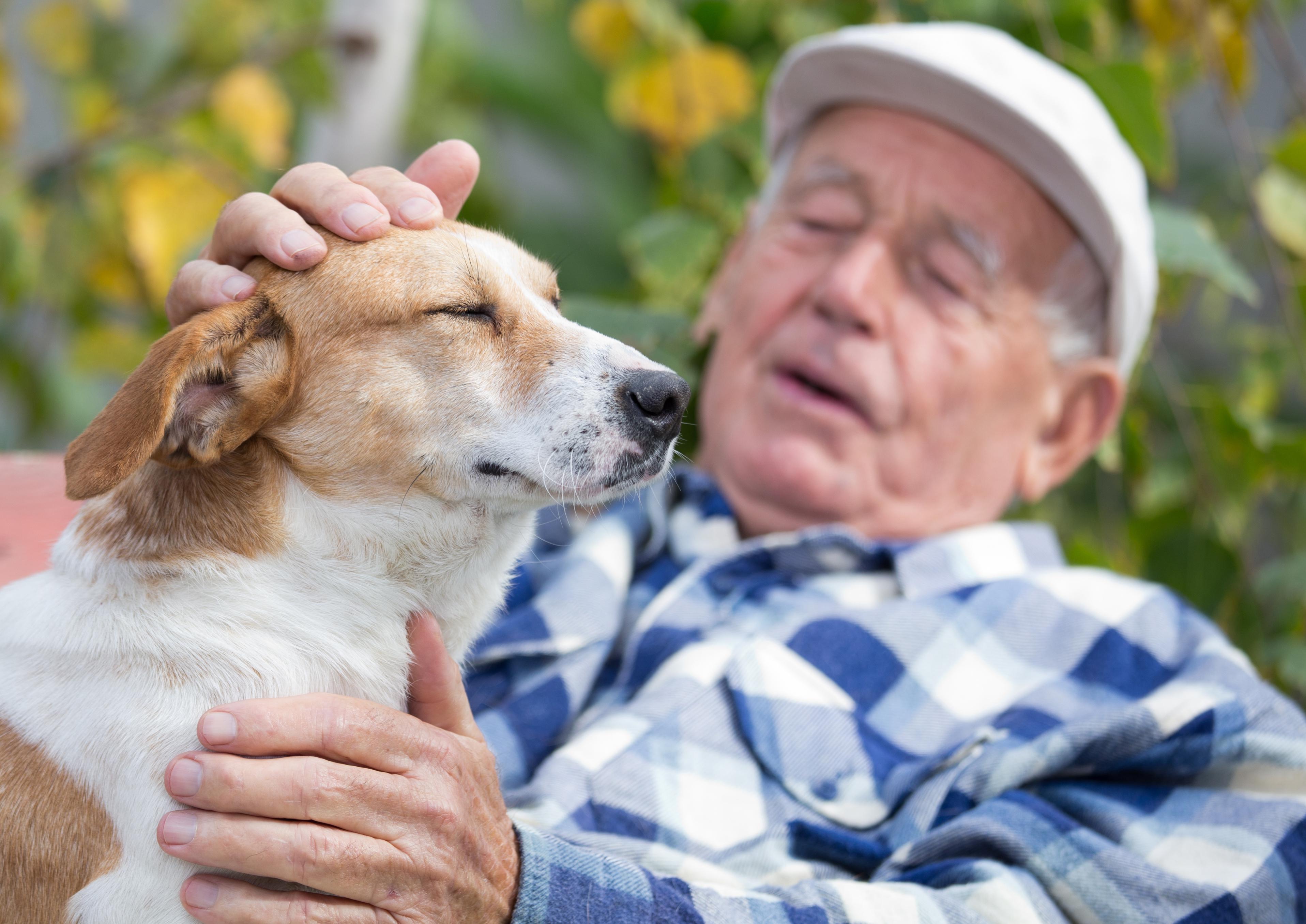 Senior man sitting on bench and cuddling