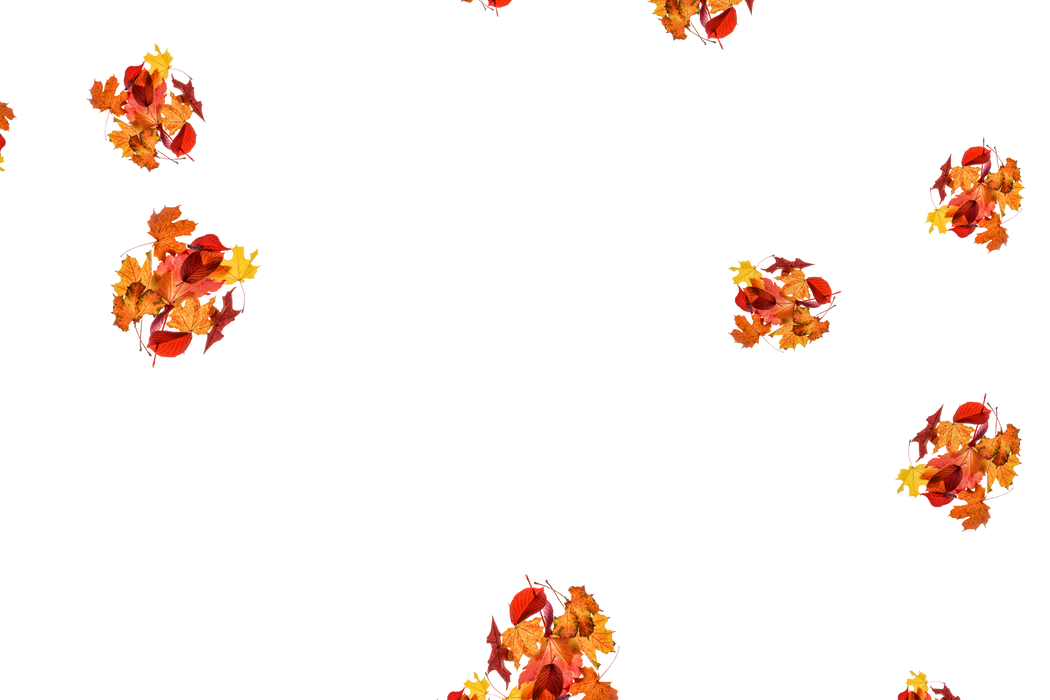 Realistic autumn leaves transparent background   Falling leaves Overlay for Photoshop