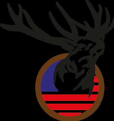 Deer with USA Flag