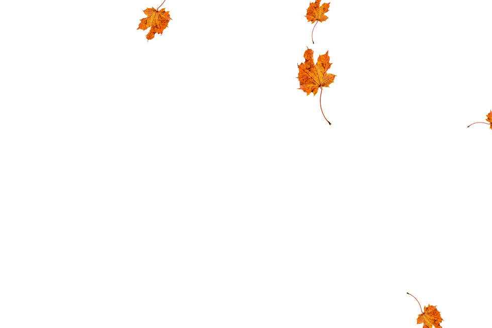 Falling leaves Photo Overlay   Lovely autumn leaves transparent background