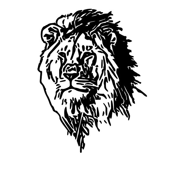 Lion Png | Free download Iron on Transfer Sarcastic Quotes T- Shirt Design in Png