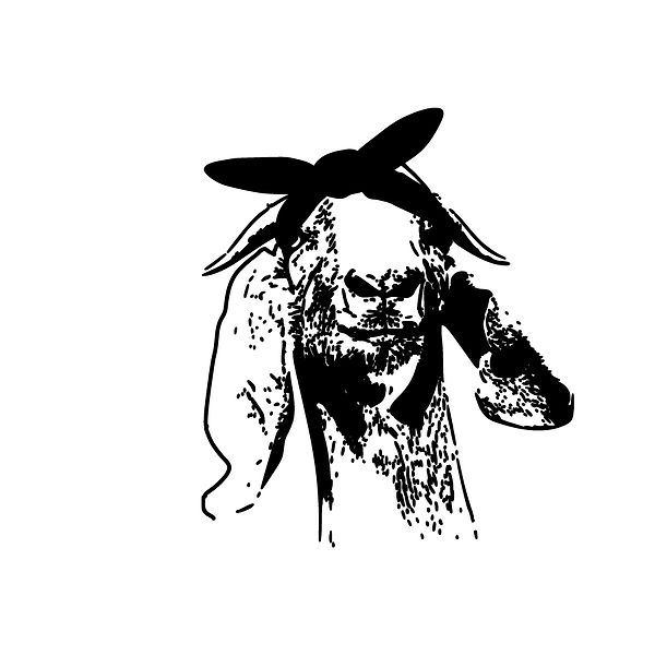 Goat with hair bandana Png | Free Iron on Transfer Slay & Silly Quotes T- Shirt Design in Png