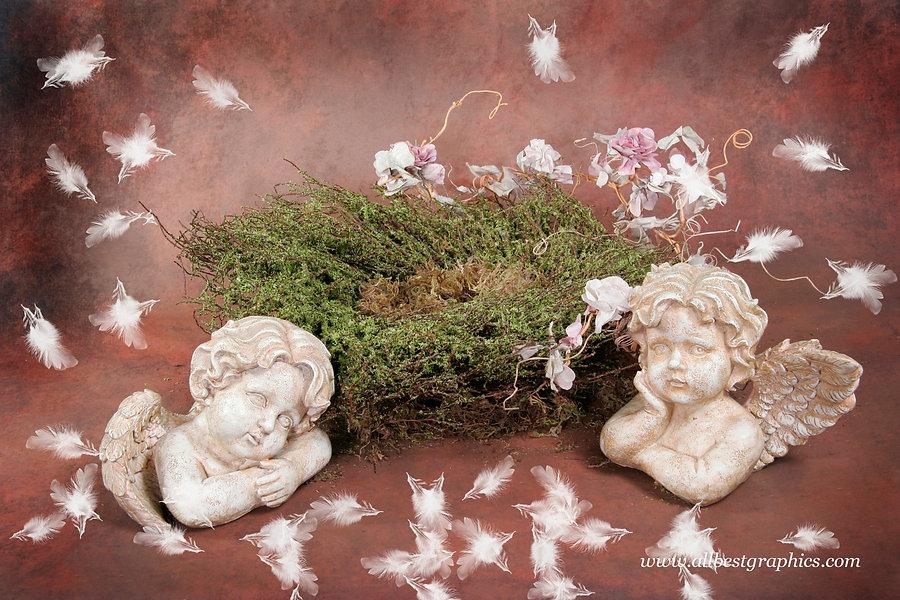 Pretty Newborn Digital Backdrop | Newborn photo props
