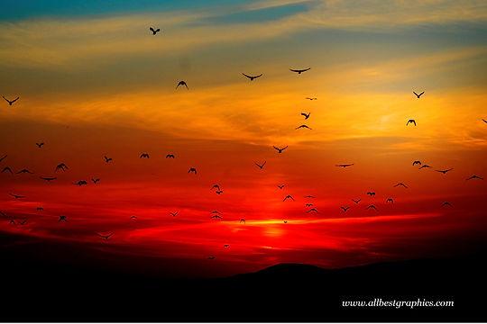 Dreamy foggy sunset sky | Overlays for Photoshop