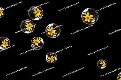 Gorgeous Bathroom Bubble Overlays | Fantastic Photo Overlay on Black