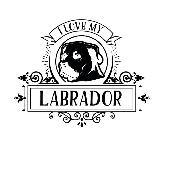 I love my labrador Png   Free Iron on Transfer Cool Quotes T- Shirt Design in Png