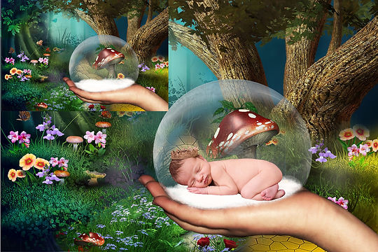 Romantic Newborn Digital Backdrop | Newborn photography