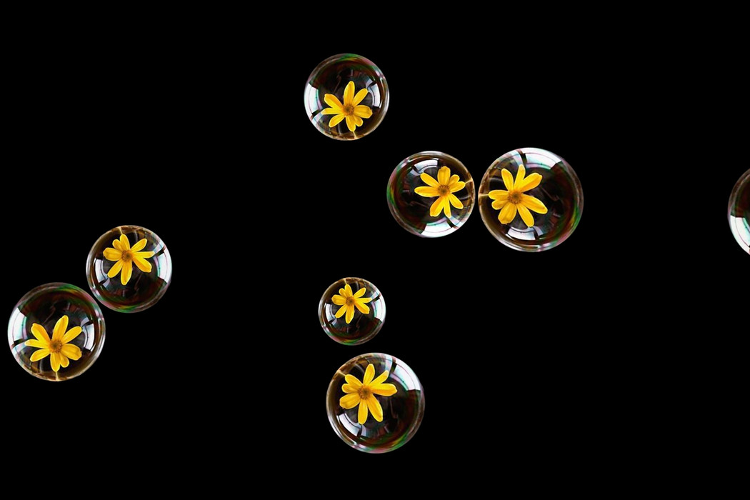 Awesome air soap bubbles on black background   Photo Overlays