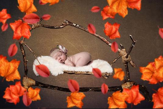 Fall Hammock Newborn Digital Backdrop | Baby Background Psd Template