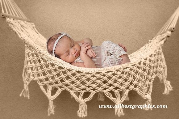 Newborn digital backdrop |  Hammock with Creamy Background