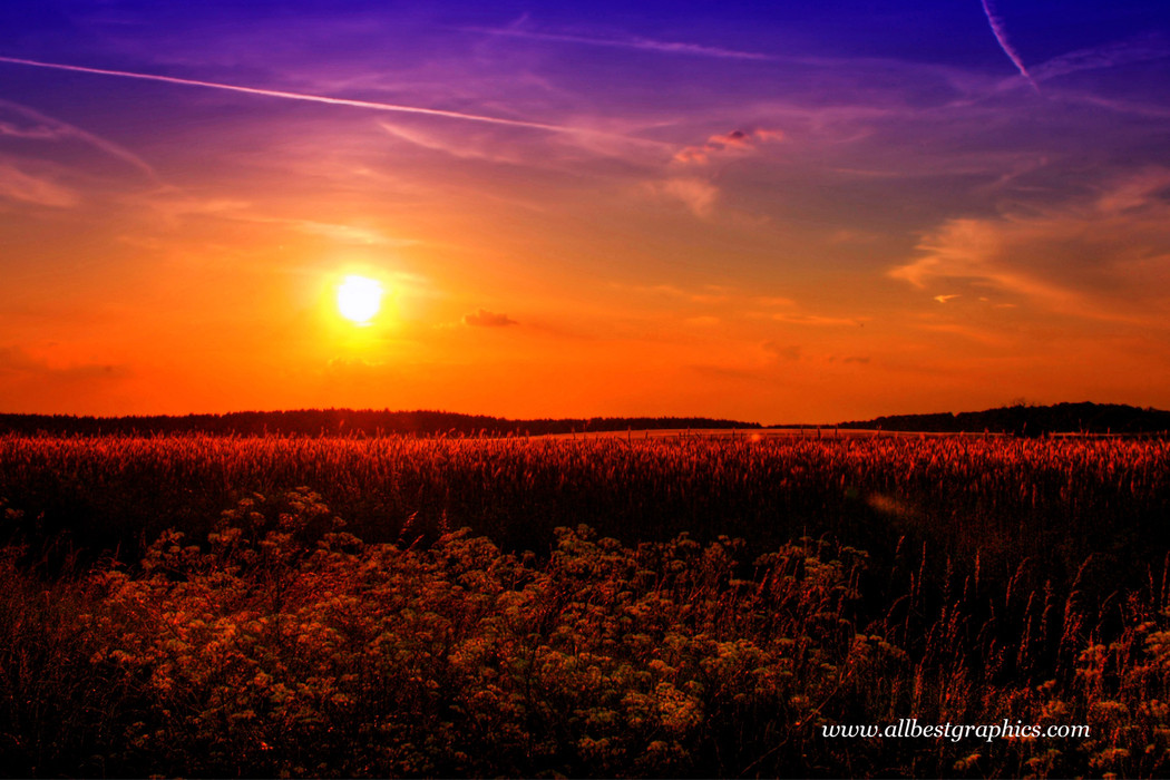 Gorgeous dramatic sky overlay | Photoshop overlays