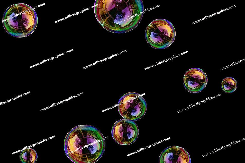 Beautiful Rainbow Bubble Overlays   Stunning Photo Overlay on Black