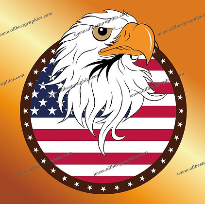 USA Bald Eagle vector graphic - Ai Eps Svg Png format