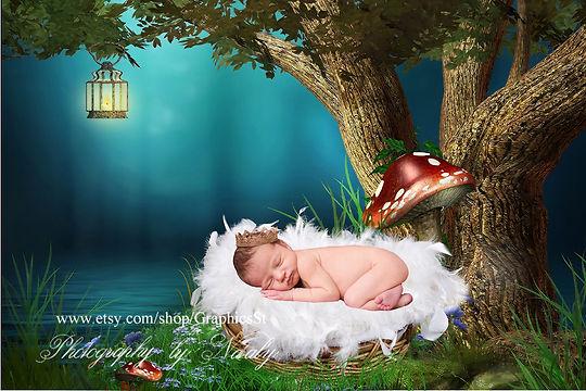 Elegant Newborn Digital Backdrop | Newborn background