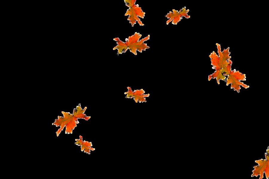 Falling leaves Photoshop Overlay   Wondrous autumn leaves transparent background