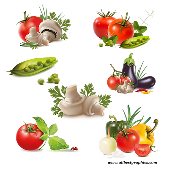 Different healthy and farm fruits & vegetables digital collection  - Food clipart png free download size - 2400x2400 300ppi